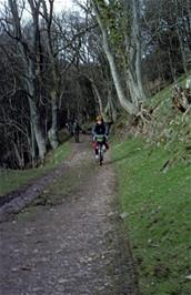 Philip Mills leads the descent of the woodland track to Selworthy