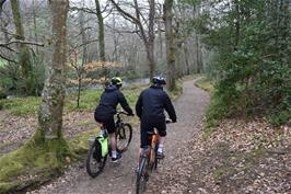 Jude and Dillan riding through Dunsford Wood from Steps Bridge, following the River Teign